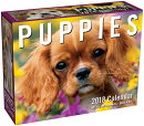 Puppies 2018 Mini Day-To-Day Calendar