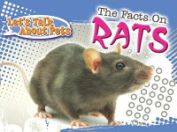 The_Facts_on_Rats
