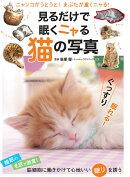 見るだけで眠くニャる猫の写真