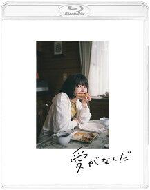 愛がなんだ(特装限定版)【Blu-ray】 [ 岸井ゆきの ]