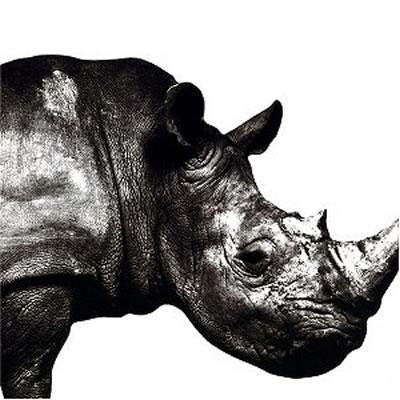 Mr.Children 1992-1995 [ Mr.Children ]