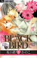 BLACK BIRD(16)