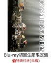 【先着特典】2nd MOVIE 「LIVE AT NIPPON BUDOKAN」(Blu-ray初回生産限定盤)(千社札付き)【Blu-ray】 [ 04 Li...