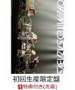 【先着特典】2nd MOVIE 「LIVE AT NIPPON BUDOKAN」(DVD初回生産限定盤)(千社札付き) [ 04 Limited Sazabys...