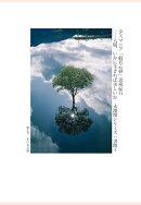 【POD】タスマニア「般若心経」思索紀行ーー人間、いかに生きれば美しいか