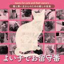 猫と飼い主さんのための癒しの音楽〜よい子でお留守番〜