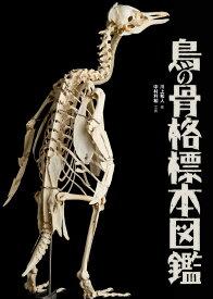 鳥の骨格標本図鑑 (BIRDER SPECIAL) [ 川上和人 ]