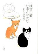 鎌倉三猫いまふたたび
