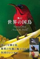 【バーゲン本】世界の国鳥
