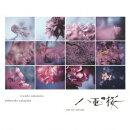 NHK大河ドラマ「八重の桜」- オリジナル・サウンドトラック - コンプリート盤