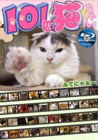 【バーゲン本】101匹猫ちゃん!! Blu-ray Disc [ ジャパンタイム ]