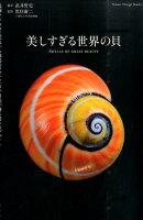 美しすぎる世界の貝