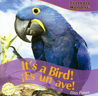 It's_a_Bird!/Es_Un_Ave!