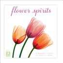 Flower Spirits 16-Month Calendar: Radiographs of Nature