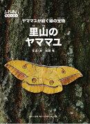 【謝恩価格本】里山のヤママユ