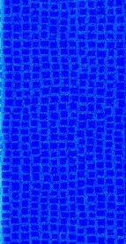2857 ビジネスプランユーティリー〈9月始まり〉(ブルー)(2020) 1ヶ月カレンダータイプ