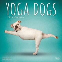 Yoga Dogs 2019 Square