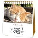 2019年 カレンダー 卓上 日なたぼっこ猫だより