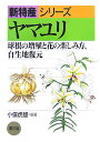 ヤマユリ 球根の増殖と花の楽しみ方、自生地復元 (新特産シリーズ) [ 小俣虎雄 ]