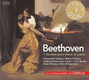 【輸入盤】Violin Sonatas: S.goldberg A.busch Francescatti Milstein Morini Heifetz Menuhin