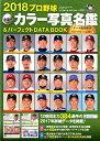 プロ野球全選手カラー写真名鑑&パーフェクトDATA BOOK(2018) (B.B.MOOK)
