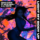 【輸入盤】Light My Body Up (Featuring Nicki Minaj & Lil Wayne)