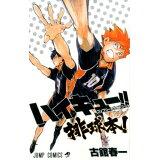 ハイキュー!!コンプリートガイドブック排球本! (ジャンプ・コミックス)