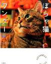 ぽちゃ猫ワンダー [ ケニア・ドイ ]