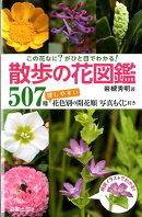 散歩の花図鑑