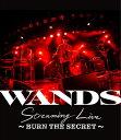 WANDS Streaming Live ~BURN THE SECRET~【Blu-ray】 [ WANDS ]