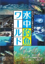 水中釣魚ワールド [ 小泉 圭一 ]