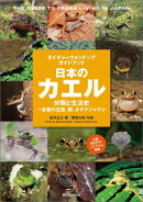 日本のカエル