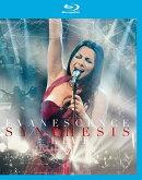 【輸入盤】シンセシス・ライヴ【Blu-ray】