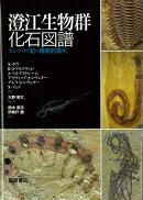 【バーゲン本】澄江生物群化石図譜