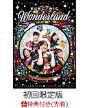 【先着特典】ももいろクリスマス2017 〜完全無欠のElectric Wonderland〜 LIVE DVD(初回限定版)(ももクリ2017 オリ…