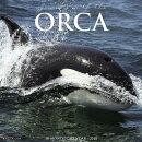 Orcas 2018 Wall Calendar