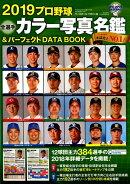 プロ野球全選手カラー写真名鑑&パーフェクトDATA BOOK(2019)