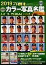 プロ野球全選手カラー写真名鑑&パーフェクトDATA BOOK(2019) (B.B.MOOK)