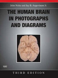 The_Human_Brain_in_Photographs
