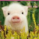 THE PIG GARDEN