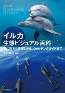 イルカ生態ビジュアル百科
