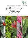 カラーリーフプランツ 葉の美しい熱帯・亜熱帯の観葉植物547品目の特徴と栽培法 (ガーデンライフシリーズ) [ 土橋 …