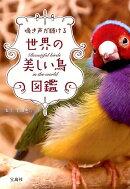 鳴き声が聴ける世界の美しい鳥図鑑