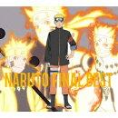 NARUTO FINAL BEST (期間生産限定盤 CD+DVD)