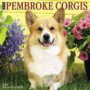 Just Pembroke Corgis 2018 Wall Calendar (Dog Breed Calendar)
