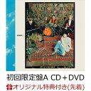 【楽天ブックス限定先着特典】沈丁花 (初回限定盤A CD+DVD)(コンパクトミラー) [ DISH// ]