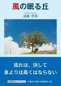 風の眠る丘 (文芸社セレクション) [ 遠藤哲和 ]