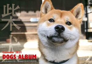 2021カレンダー ドックズアルバム 柴犬 [ 新美敬子 ]