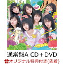【イベント参加抽選&楽天ブックス限定先着特典】サステナブル (通常盤 CD+DVD Type-A) (生写真付き)