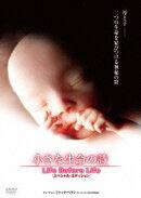小さな生命の詩 LIFE BEFORE LIFE スペシャル